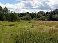 GOC Wheathampstead 051 Wet meadow (19597947106).jpg