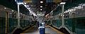 GO trains at Union Station 2008.jpg