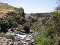Gamla Nature reserve (38).JPG