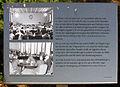 Gedenktafel Ossietzkystr 45 (Nieds) Runder Tisch.jpg