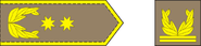 General major-arm