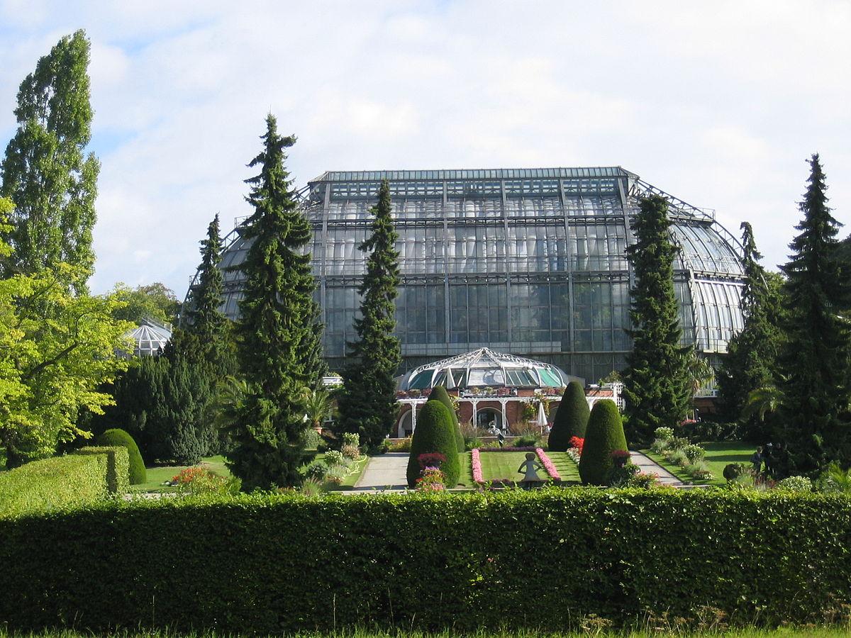 Jardin botanique et mus e botanique de berlin dahlem for Bal des citrouilles jardin botanique