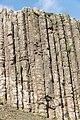Giant's Causeway - Bushmills, Northern Ireland, UK - August 17, 2017 14.jpg