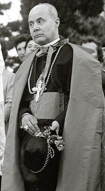 Giuseppe Cardinale Paupini - Particolare.jpg