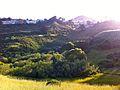 Glen canyon park (5674817892).jpg
