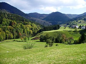 Southern Black Forest - The Präg Bowl near Todtnau in the upper Wiese valley