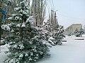 Gorodishche, Volgograd Oblast, Russia - panoramio (6).jpg