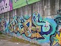 Graffiti nel quartiere La Rustica 23.jpg