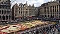 Grand place de Bruxelles Tapis de Fleur 3.jpg
