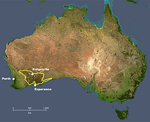 Great Western Woodlands location within Australia.jpg