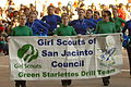 Green Starlettes Drill Team.jpg