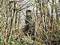 Greenacre Ruins, Llanteg - geograph.org.uk - 1210888.jpg