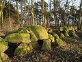 Großsteingrab Lähden I.JPG