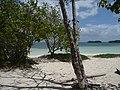 Guadeloupe - panoramio - georama (13).jpg