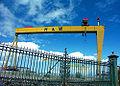 H&W Cranes2.jpg
