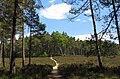 Hårup Sande - panoramio (2).jpg