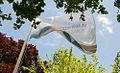 Hague Institute Flag.jpg