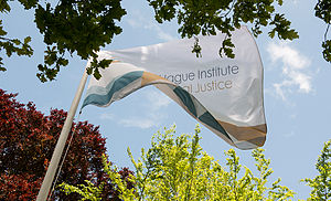 The Hague Institute for Global Justice - The Hague Institute for Global Justice flag