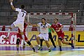 Handball-WM-Qualifikation AUT-BLR 019.jpg