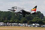 Harrier (5132379249).jpg