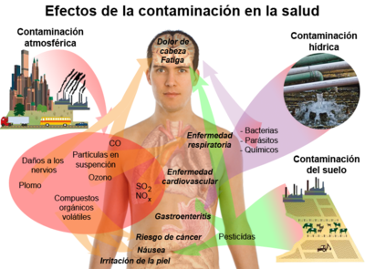 Contaminaci n wikipedia la enciclopedia libre for Horario peru wellness