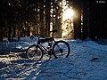 Herbert trail with bike (4368818493).jpg
