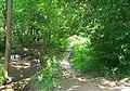 High Park Wood, Moorgreen - geograph.org.uk - 16378.jpg