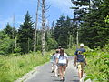 Hikers heading up Clingmans Dome IMG 4932.JPG