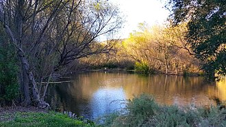 Arroyo Conejo Nature Preserve - Hill Canyon Wastewater Treatment Plant's constructed wetlands in Hill Canyon.
