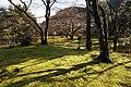Hogon-in Kyoto Japan07bs.jpg