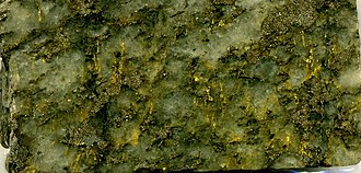 Homestake Mine (South Dakota) - Homestake  high-grade gold ore, view is about 1.2 cm wide