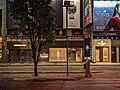Hong Kong IMG 20191006 185336 (48857048413).jpg