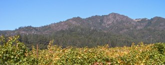 Sonoma County, California - Hood Mountain with vineyards in foreground.