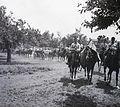 Horse, Horse-drawn carriage, artillery, cannon Fortepan 83695.jpg