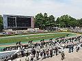 Horse racing @ Tokyo Race Course @ Fuchu (14117879772).jpg