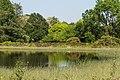 Hortus Haren d.j.b 11.jpg