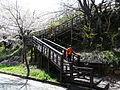 Hwagae Cherry Blossoms Festival 034.JPG