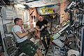 ISS-43 Terry Virts and Scott Kelly take a rest from their duties.jpg