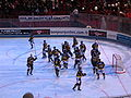 Ice Hockey French Cup 2008 58.JPG
