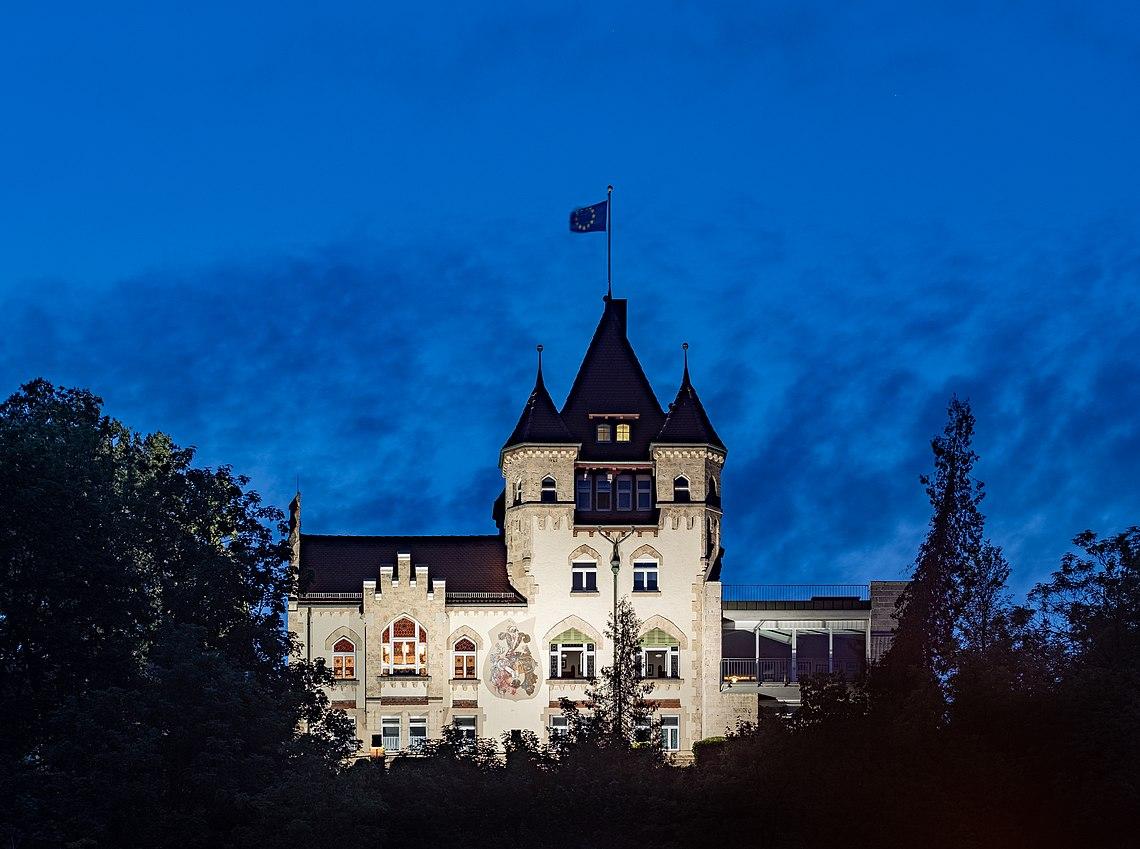 Igel in Tübingen mit nächtlicher Beleuchtung.jpg
