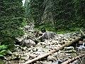 "Im Tatras - ,Trocken WasserTal"" - panoramio.jpg"