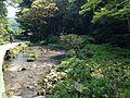 Inagawa River near Akiyoshi Cave 4.jpg
