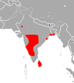 Indian Roundleaf Bat area.png