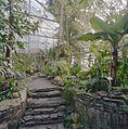 Interieur, sfeeropname van de tropische kas - Haren - 20334350 - RCE.jpg