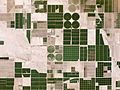 Irrigated Fields Arizona USA - Planet Labs satellite image.jpg