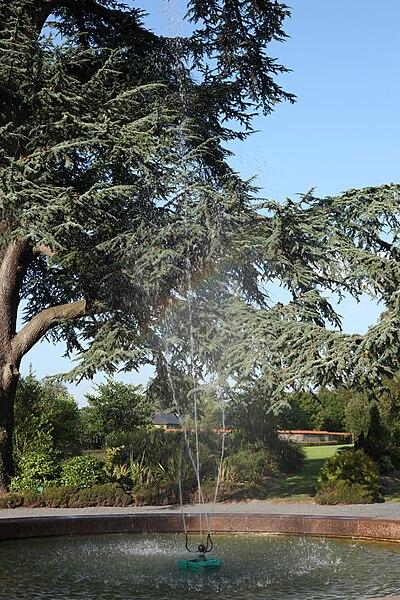 Fontaine et cèdre du jardin botanique du parc du château de Canisy