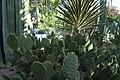 Jardin Majorelle in Marrakesch 02.jpg