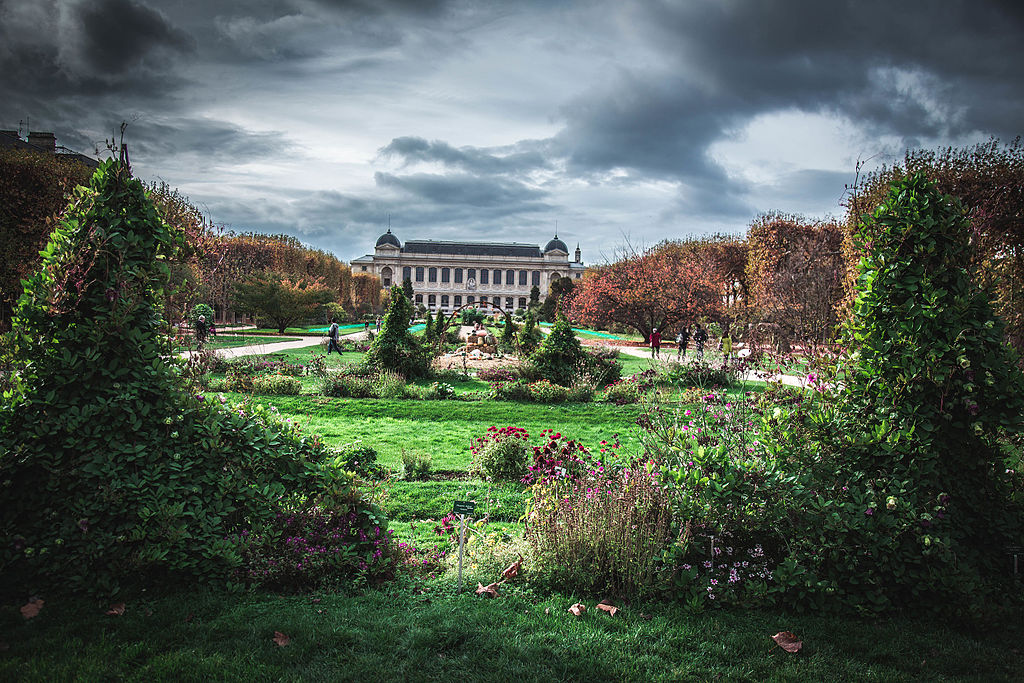 File jardin des plantes paris november for Jardin plantes paris