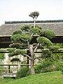 Jardin japonais de l ile de Versailles.jpg