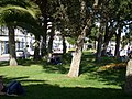 Jardins du front de mer - panoramio - FrenchCobber (1).jpg
